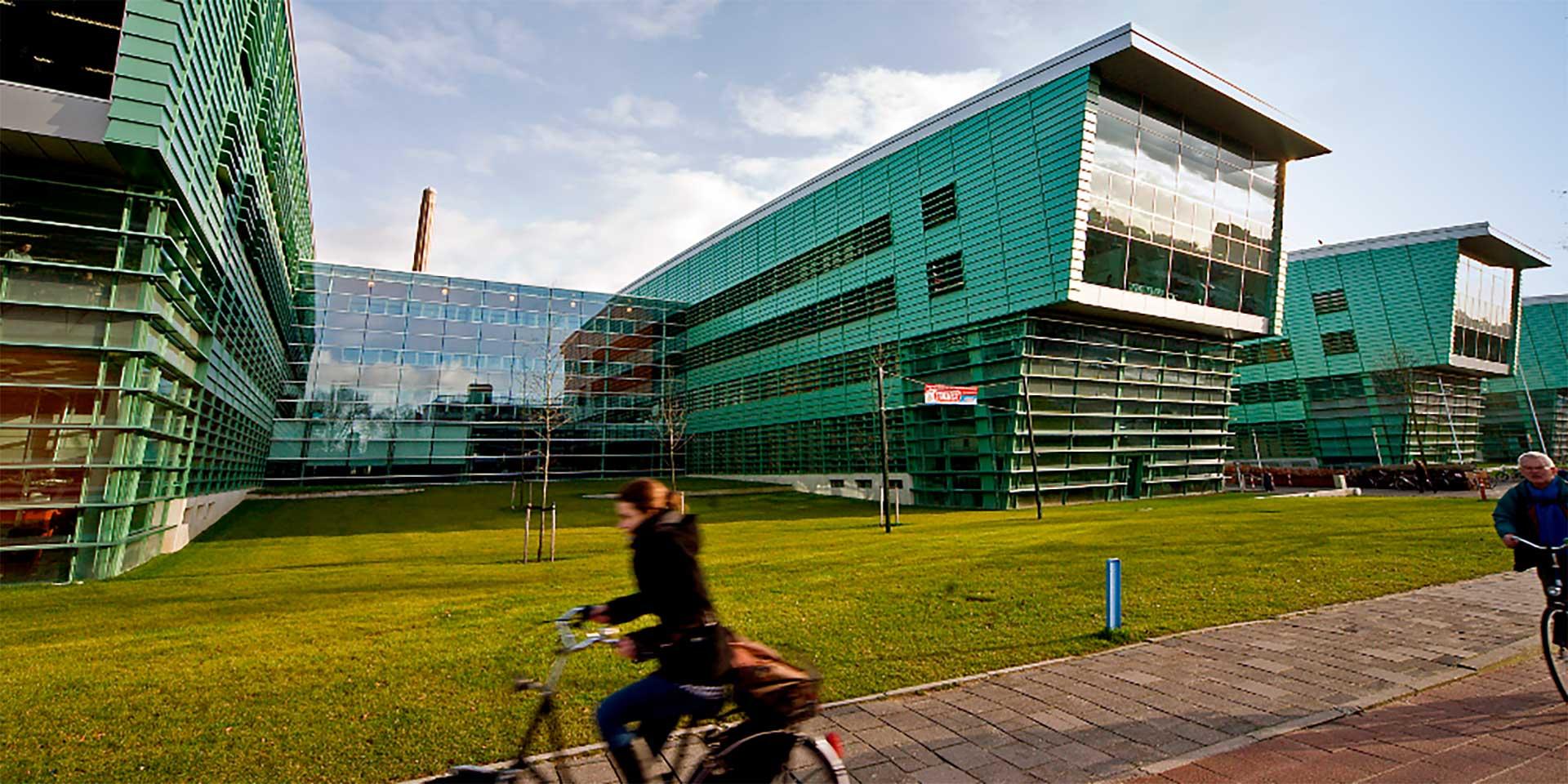 sshn-studentato-olanda