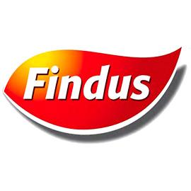 risparmio-energetico-aziende-findus